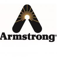 Armstrong International A9764 Electrode Assembly